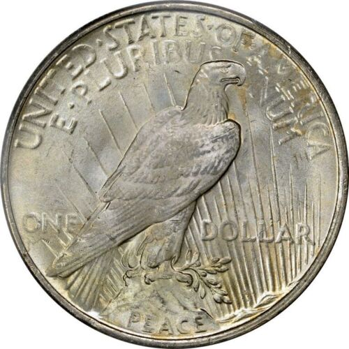 1925 Peace Silver Dollar Brilliant Uncirculated Bu Ebay