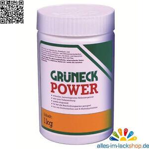 1Kg-Kluthe-Grueneck-Power-Abbeizer-Lackentferner-Abbeizmittel-Entlackungsmittel