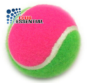 2 x Colourful Tennis Balls Sports Games Tennis Cricket Dog ...