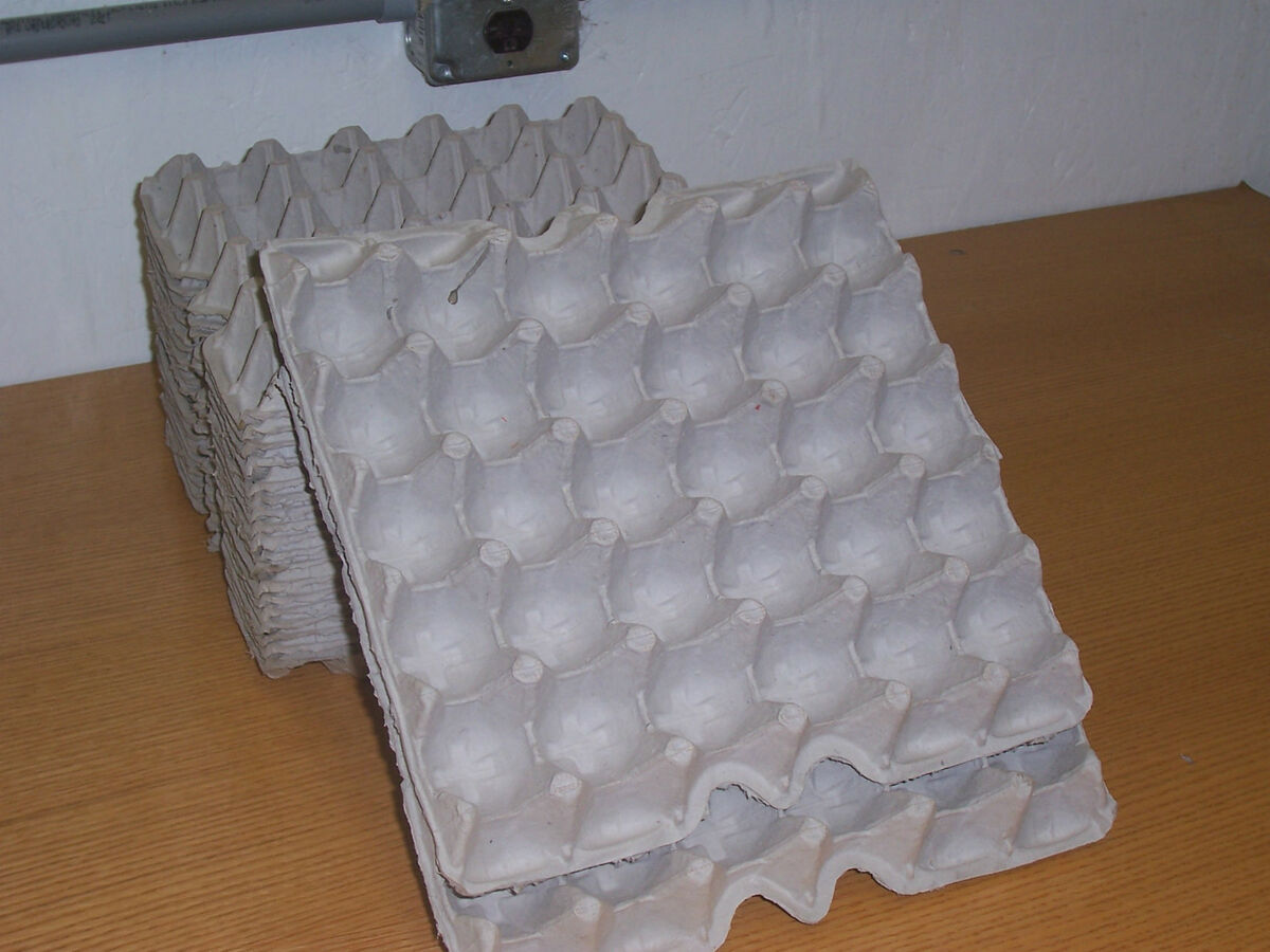 Chicken Egg Cartons Poultry