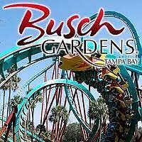 20% OFF BUSCH GARDENS TAMPA FLORIDA TICKETS COUPON PROMO PLUS 2ND DAY FREE BONUS in Specialty Services, Other Services | eBay