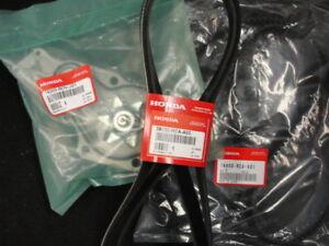 Acura  2003 on 2003 2009 Acura Mdx Timing Belt Kit New Belts Pump   Ebay