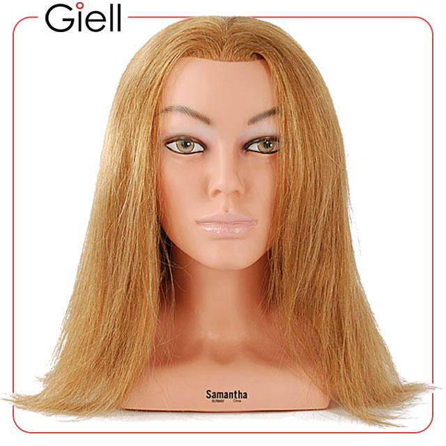 23 Cosmetology Mannequin Head 100 Human Hair Sam 4