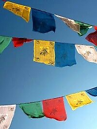 10 inch Tibetan Buddhist PRAYER FLAGS *LUNG TA*  Hand Made in Nepal