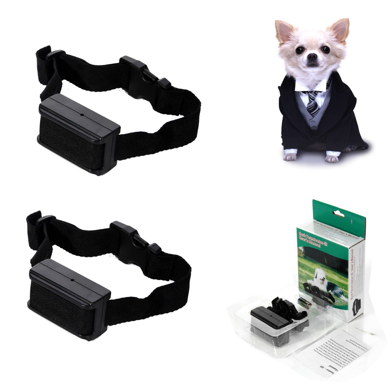 What Is The Best Small Dog Shock Collar