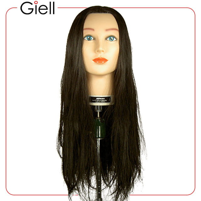 30 Cosmetology Mannequin Head Synthetic Hair Allison