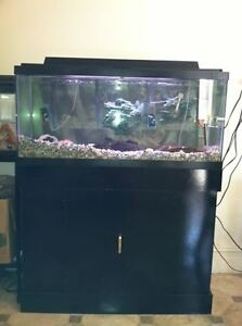 Gallon Fish Tank on 30 Gallon Fish Tank W Stand Extras   Ebay