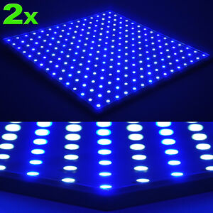 450-LED-Grow-Light-Blue-White-Panel-Hydroponic-Veg-Clone-Bloom-Aquarium-Lamp-66w