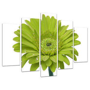 5 Panel Wall Art Lime Green Floral Canvas Pictures Living