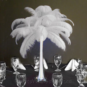 "50 PIECES 12-15"" Ostrich Feathers for Wedding Centerpieces & Crafts. Free Ship! in Home & Garden, Wedding Supplies, Decorations 