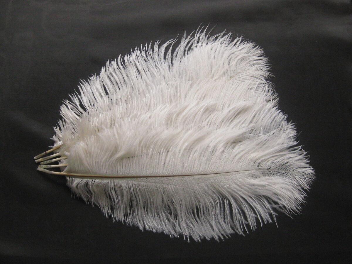 Pcs black white ostrich feathers wedding centerpieces u