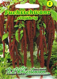 512123 fuchsschwanz amaranthus blumen saatgut mischung. Black Bedroom Furniture Sets. Home Design Ideas