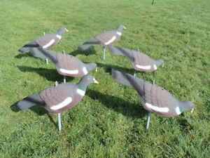 6-Tauben-Attrappen-Bemalt-Super-Qualitaet-Jagd-Ausstattung-zum-Einstecken