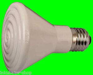 60-W-Waermebirne-Keramiklampe-Dunkelstrahler-Waermelampe-Inkubator-Heizer-Elstein
