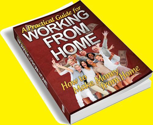 A Practical Guide for Working from Home eBook + Free Shipping +Free Bonus e book in Books, Other | eBay