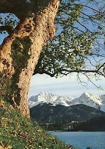 AK-Barmsee-mit-Karwendel