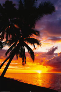 AKTION-Poster-SUNSET-PALM-BEACH-Strand-Meer-NEU-57292