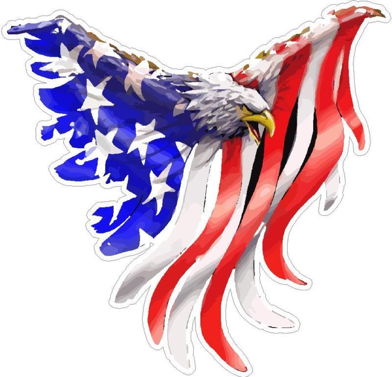 Bald Eagle American Flag Flames