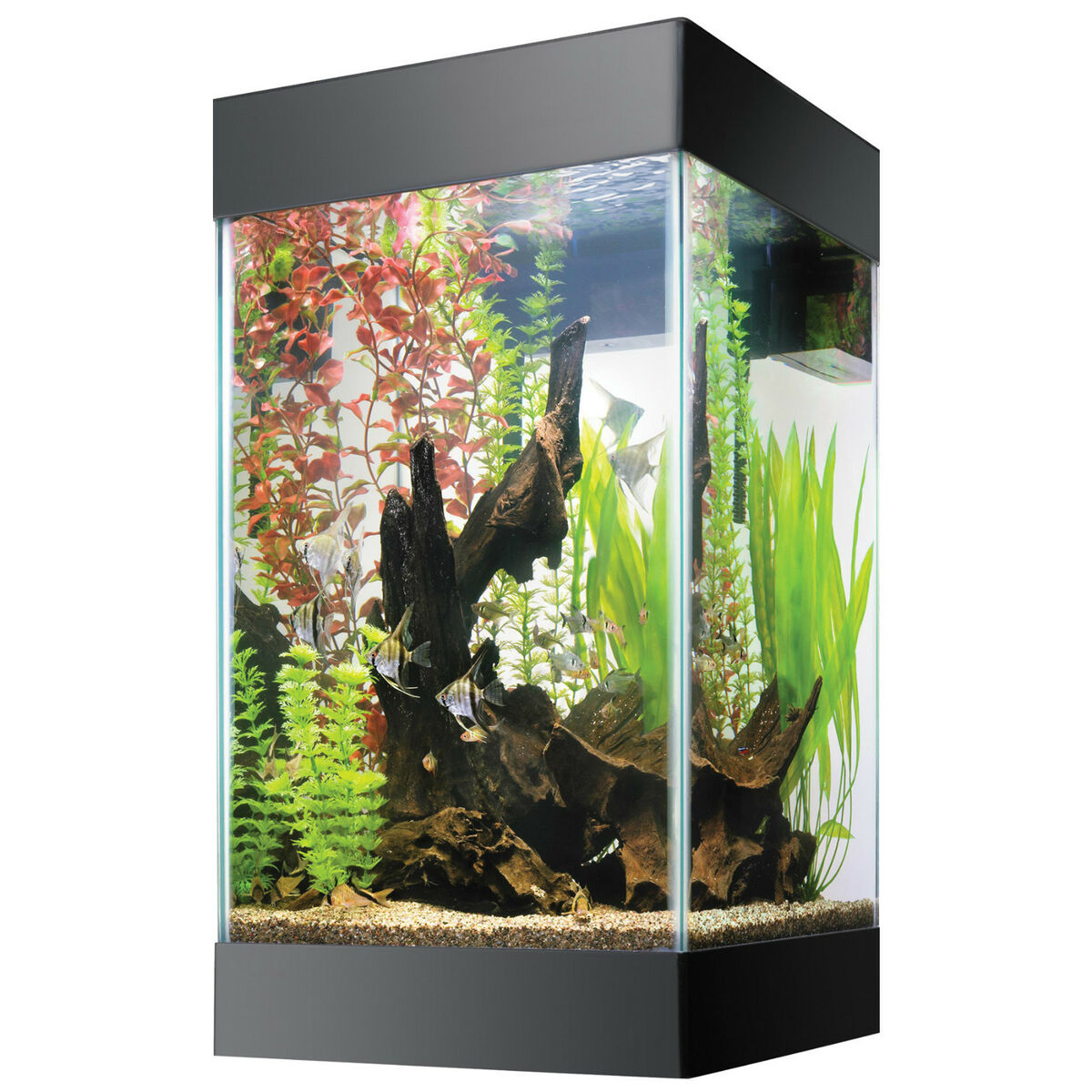 aqueon 15 gallon column tropical fish tank aquarium w