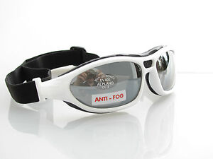 alpland sportbrille sonnenbrille radbrille fahrrad bike cross brille ebay. Black Bedroom Furniture Sets. Home Design Ideas