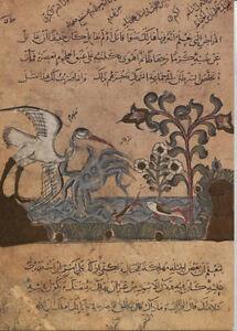 Alte-Kunstpostkarte-Kormoran-Fische-und-Krebs