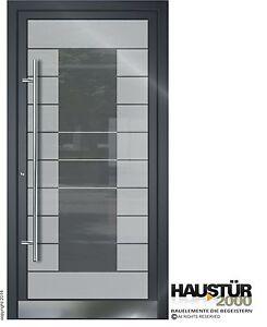 aluminium haust r ganzglasf llung alu glast r nach ma mod. Black Bedroom Furniture Sets. Home Design Ideas