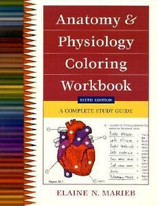 study anatomy and physiology