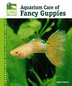Aquarium Care of Fancy Guppies by Stan S...