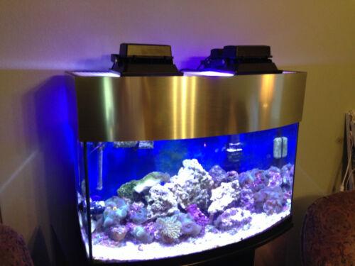 Aquarium Reef LED Lamp 20W 450 nm Actinic BLUE (150W Metal Halide alt. Light) in Pet Supplies, Aquarium & Fish, Lighting | eBay