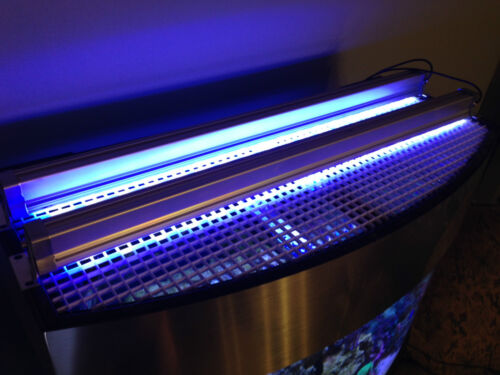 "Aquarium Reef LED Light Bar 24"" inch 3W LEDs 50/50 White/Actinic BLUE 2 ft in Pet Supplies, Aquarium & Fish, Lighting 