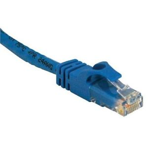 Router Gigabit Ethernet on Blue 25 Feet Cat6 Rj45 Ethernet Network Cisco Gigabit Router Switch