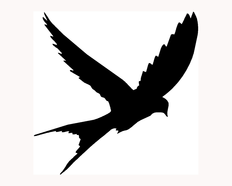 Bird in flight silhouette - photo#7