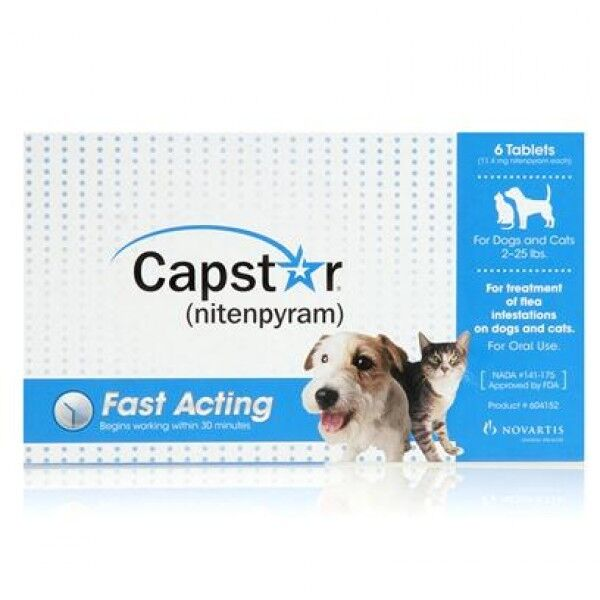 Oral Flea Treatment For Dogs And Cats