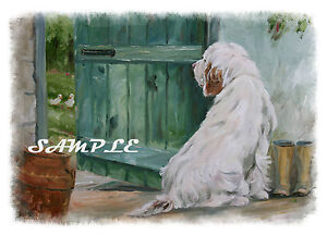CLUMBER-SPANIEL-Limited-edition-print-No-2-Sandra-Coen-oil-painting-original