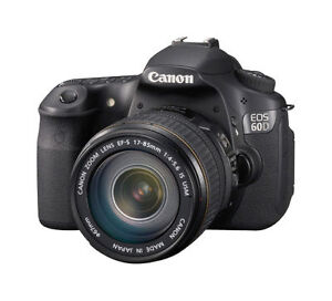 Canon EOS 60D 18.0 MP Digital SLR Camera...
