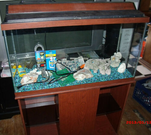 Complete Fish Tank with Lots of Extras in Pet Supplies, Aquarium & Fish, Aquariums | eBay