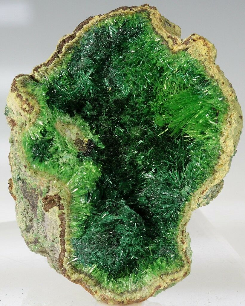 Rock And Mineral Dealers On Ebay Seller Directory