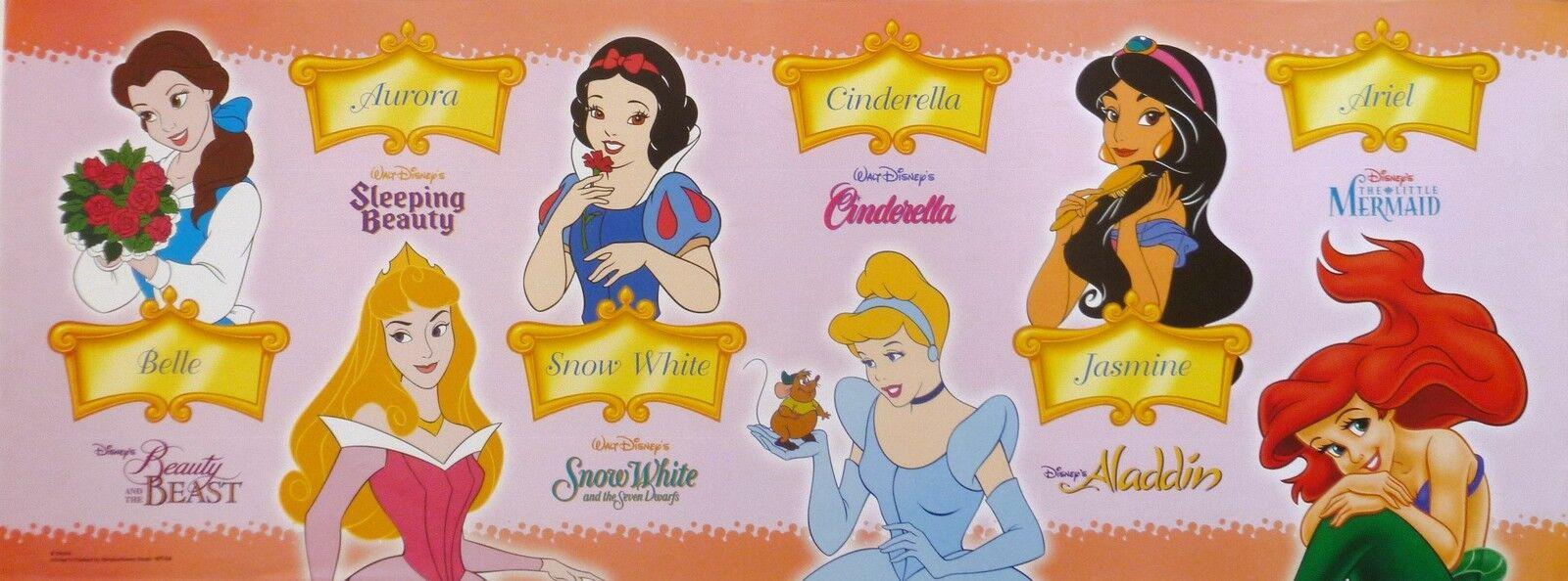 Disney Princess Names DISNEY   PRINCESS   POSTER