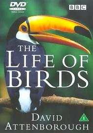 David-Attenboroughs-Life-Of-Birds-DVD-2000