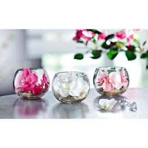 deko orchidee im glas 3er set tischdekoration floristik. Black Bedroom Furniture Sets. Home Design Ideas