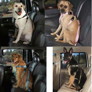 "Dog Car Safety Harness >> Dog SUV Truck Van Car Safety Pet Restraint Harness w Seat Belt Strap XS 7 15""G 