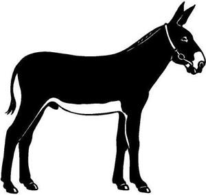Donkey Vinyl Decal Car Truck Window Sticker in Specialty Services, Graphic & Logo Design | eBay