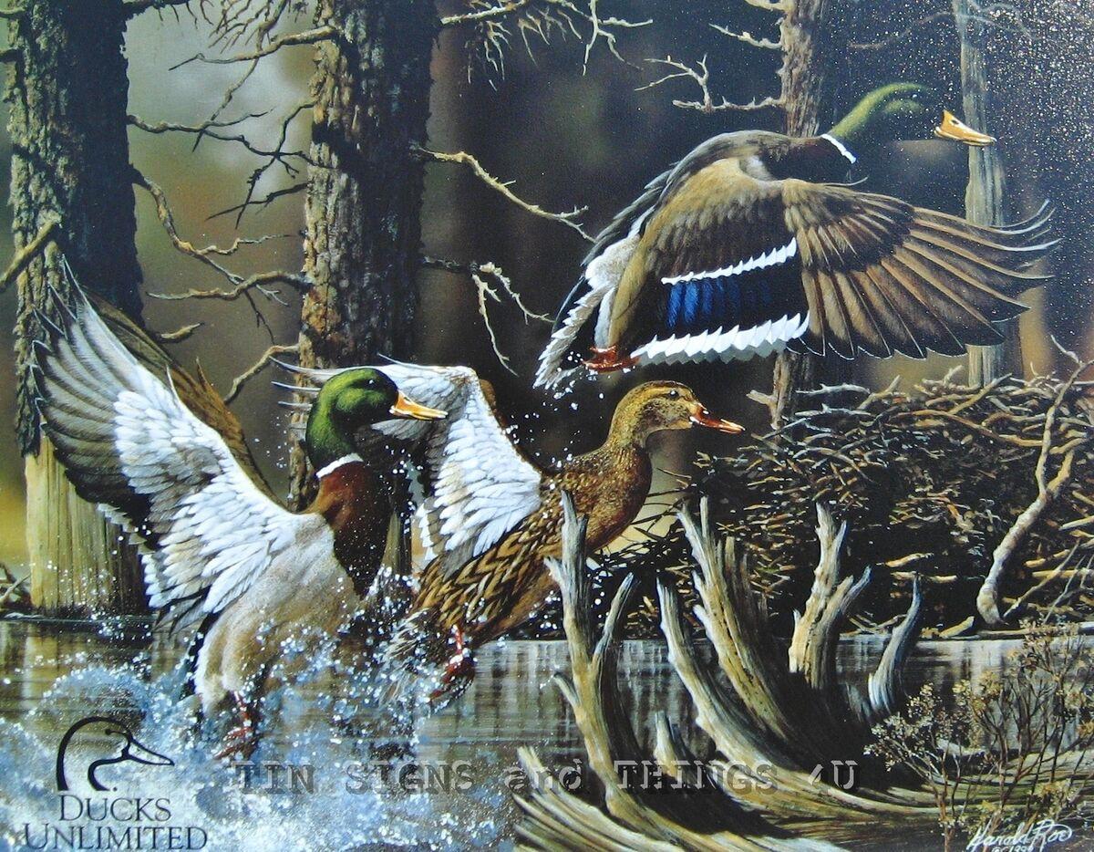 Ducks Unlimited Beaver Pond Mallard Tin Sign Metal Wall Art Decor Cabin 1204 A