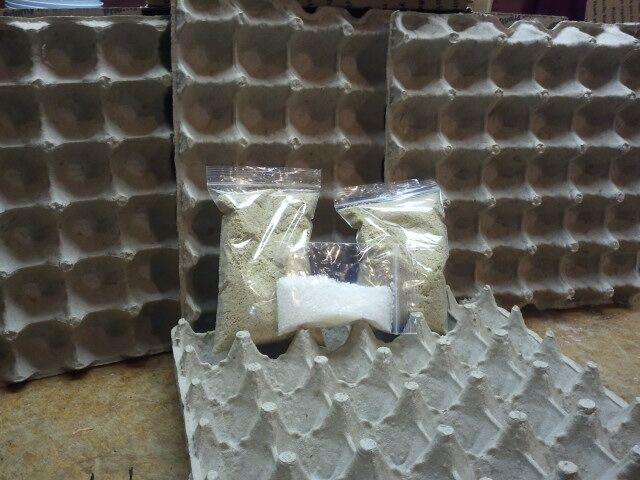 Egg Cartons Crates Paper Trays Flats Hatching Craft School Jewelry