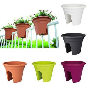 elho green basic flower bridge blumentopf blumenkasten pflanztopf gel nder 30cm ebay. Black Bedroom Furniture Sets. Home Design Ideas