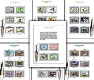 Federal Duck Migratory RW1-RW79 Full Color Stamp Album Pages in Stamps, Publications & Supplies, Albums | eBay