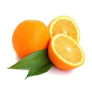 fliesensticker orange fliesenaufkleber 10x10 cm fr chte obst k che s dfrucht ebay. Black Bedroom Furniture Sets. Home Design Ideas