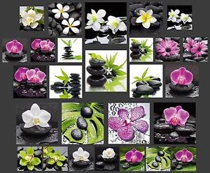 glasbild wandbild deco glass float glas orchidee feng shui. Black Bedroom Furniture Sets. Home Design Ideas