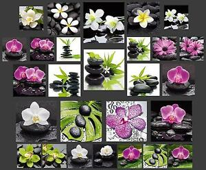 glasbild wandbild deco glass float glas orchidee feng shui. Black Bedroom Furniture Sets. Home Design Ideas