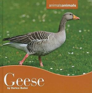 Geese by Darice Bailer (2010, Hardcover)